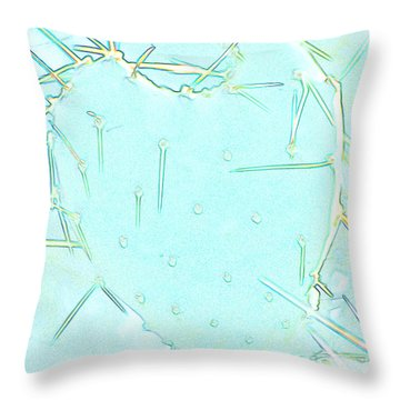 Throw Pillow featuring the photograph Fragile Heart by Roselynne Broussard