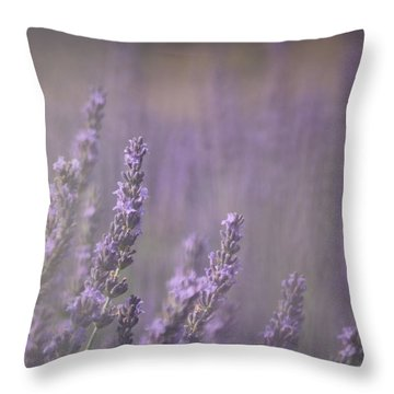 Throw Pillow featuring the photograph Fragrance by Lynn Sprowl