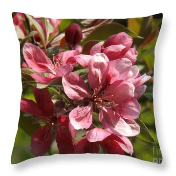 Fragrant Crab Apple Blossoms Throw Pillow by Brenda Brown