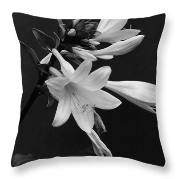 Fragrant Plantain Lily Throw Pillow