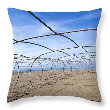 Framed Beach Throw Pillow