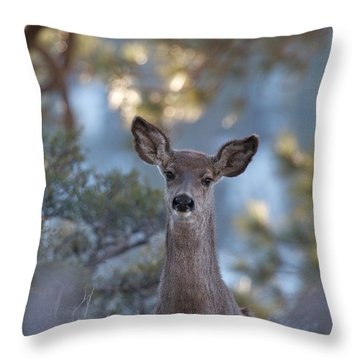 Framed Deer Head And Shoulders Throw Pillow