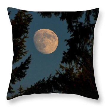 Framed Moon Throw Pillow