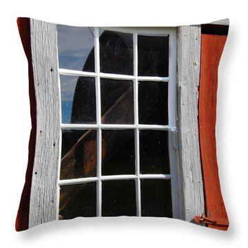 Framed Reflection Throw Pillow