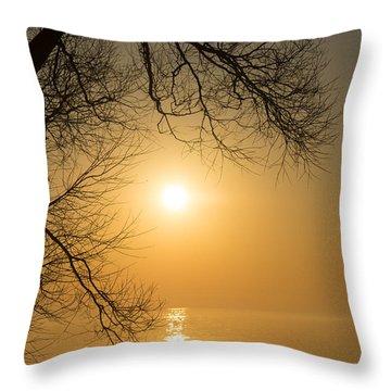 Framing The Golden Sun Throw Pillow by Georgia Mizuleva