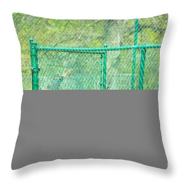 Free Throw Pillow by Alys Caviness-Gober