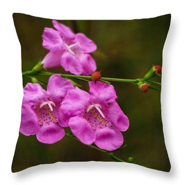 Free Throw Pillow by Julie Andel