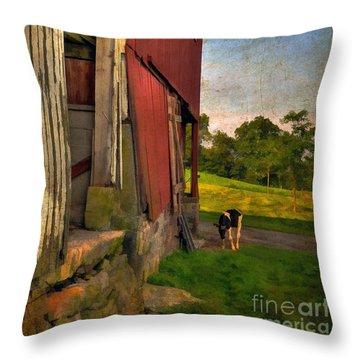 Free Range Throw Pillow by Lois Bryan