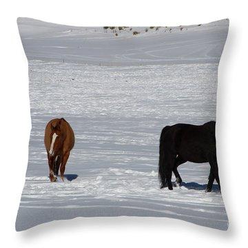 Free Spirits Throw Pillow by Fiona Kennard