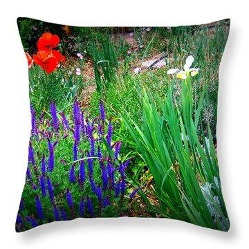 Free To Be Wild Throw Pillow by Bobbee Rickard