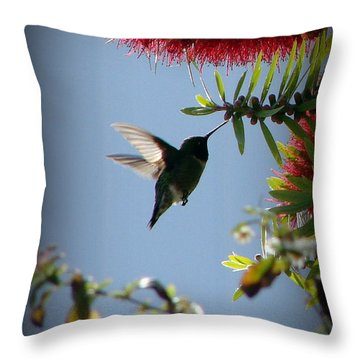 Freeze Throw Pillow