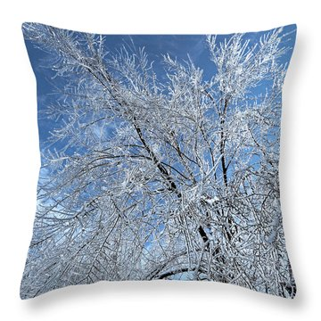 Throw Pillow featuring the photograph Freezing Rain ... by Juergen Weiss