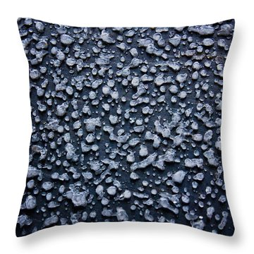 Freezing Rain Throw Pillow