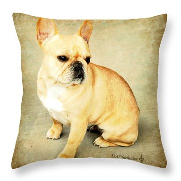 Throw Pillow featuring the photograph French Bulldog Antique by Barbara Chichester