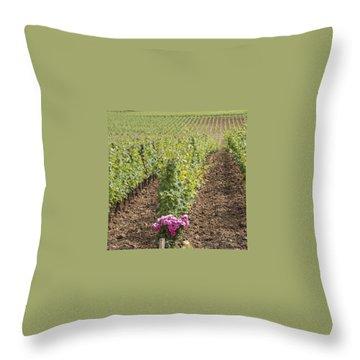 Vineyard Throw Pillows