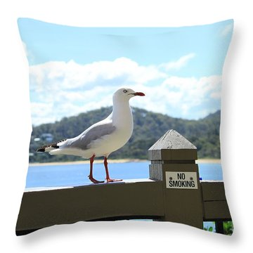 Fresh Air All Profits Go To Hospice Of The Calumet Area Throw Pillow