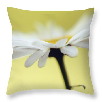 Fresh As A Daisy Throw Pillow by Lois Bryan