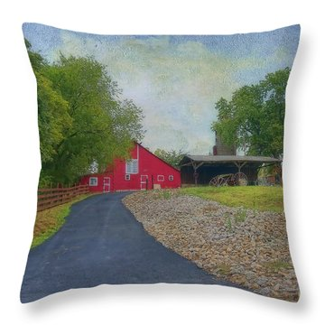 Throw Pillow featuring the photograph Fresh Country Charm by Liane Wright