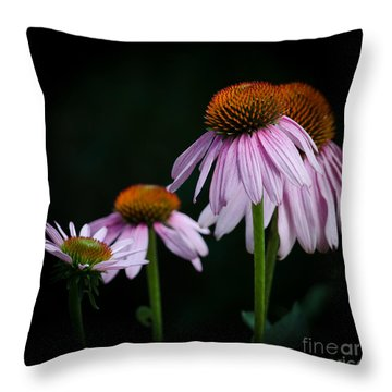 Fresh Echinacea Throw Pillow by Renee Barnes