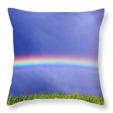 Fresh Grass And Sky With Rainbow Throw Pillow by Michal Bednarek