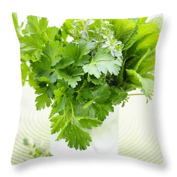 Fresh Herbs In A Glass Throw Pillow by Elena Elisseeva