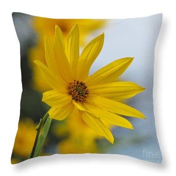 Fresh Linen 8 Throw Pillow by France Laliberte