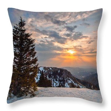 Fresh Morning Throw Pillow