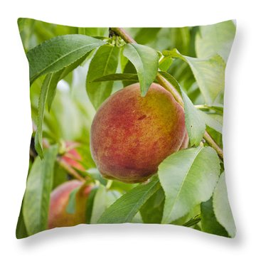 Fresh Peaches On The Tree Throw Pillow