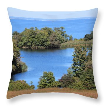 Fresh Pond At Caumsett Throw Pillow