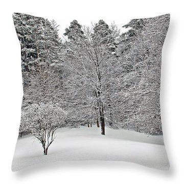 Fresh Snow Scene Throw Pillow by Aimee L Maher Photography and Art Visit ALMGallerydotcom