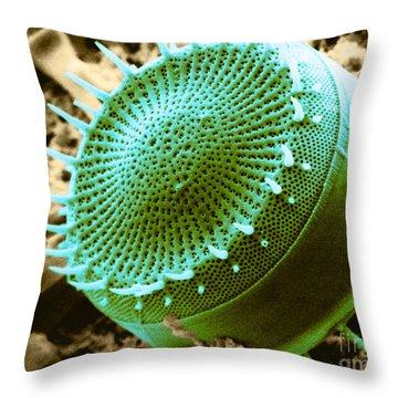 Freshwater Diatom, Sem Throw Pillow by Asa Thoresen