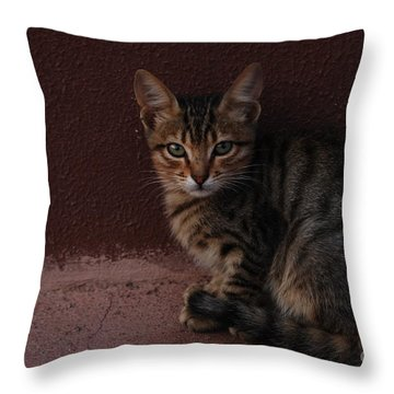 Throw Pillow featuring the photograph Freyja by Erhan OZBIYIK
