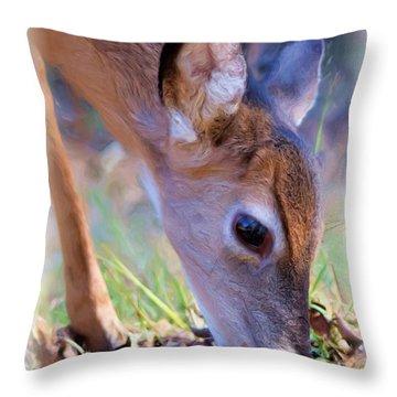 Friendly Little Buck Throw Pillow