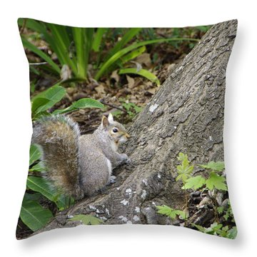 Throw Pillow featuring the photograph Friendly Squirrel by Marilyn Wilson