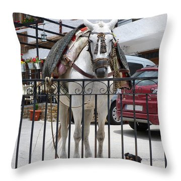 Friends At Trevelez - Spain Throw Pillow