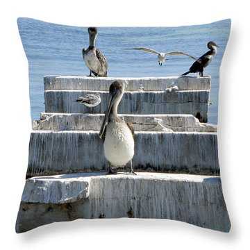 Pelican Friends Throw Pillow