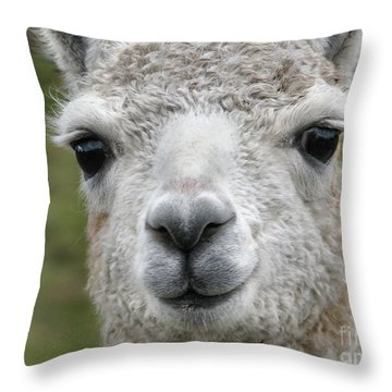 Friends From The Field Throw Pillow
