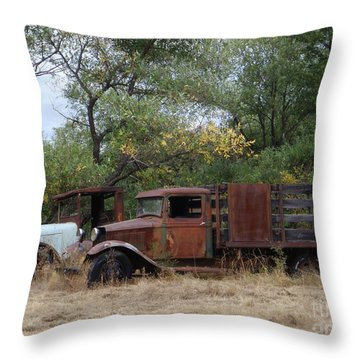 Friends To The End Throw Pillow by Mary Deal