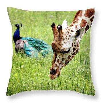 Friendship Throw Pillow by Nishanth Gopinathan