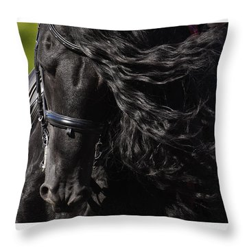 Throw Pillow featuring the photograph Friesian Beauty D8197 by Wes and Dotty Weber