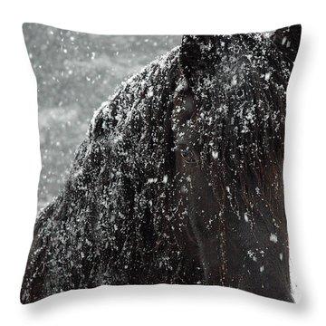 Friesian Snow Throw Pillow by Fran J Scott