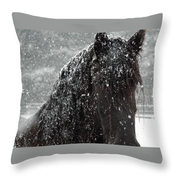 Friesian Snow Throw Pillow by Fran J Scott