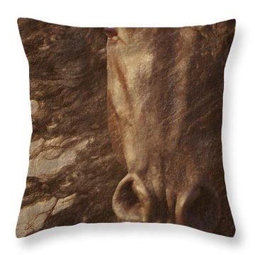 Friesian Spirit Throw Pillow
