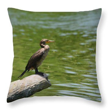 Throw Pillow featuring the photograph Frigate Bird Watching Estuary by Christine Till