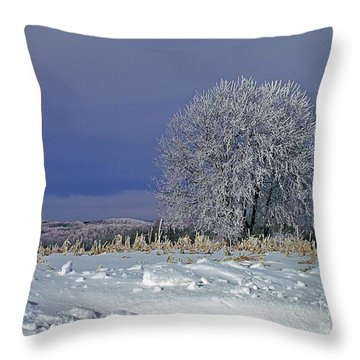 Frigid Beauty Throw Pillow