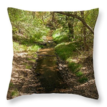 Frijole Creek Bandelier National Monument Throw Pillow