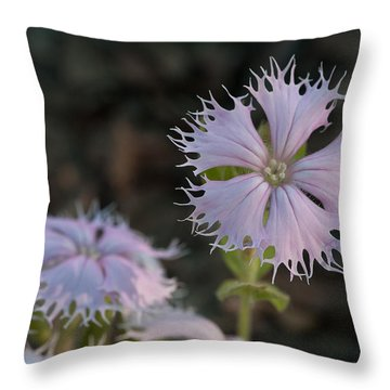 Throw Pillow featuring the photograph Fringed Catchfly by Paul Rebmann