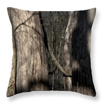 Frisky Throw Pillow