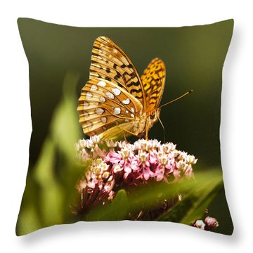 Fritillary Butterfly On Pink Milkweed Flower Throw Pillow by Christina Rollo