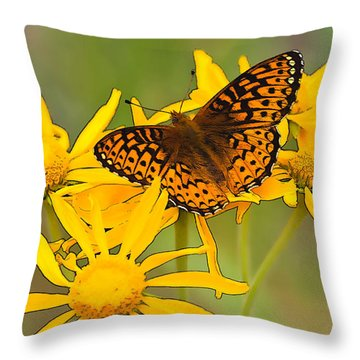 Fritillary Throw Pillow
